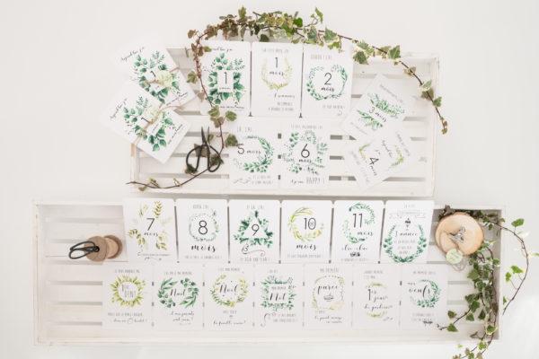Cartes étapes Botaniques